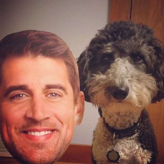 Lola the assiedoodle Dog poses with Aaron Rodgers from the Green Bay Packers